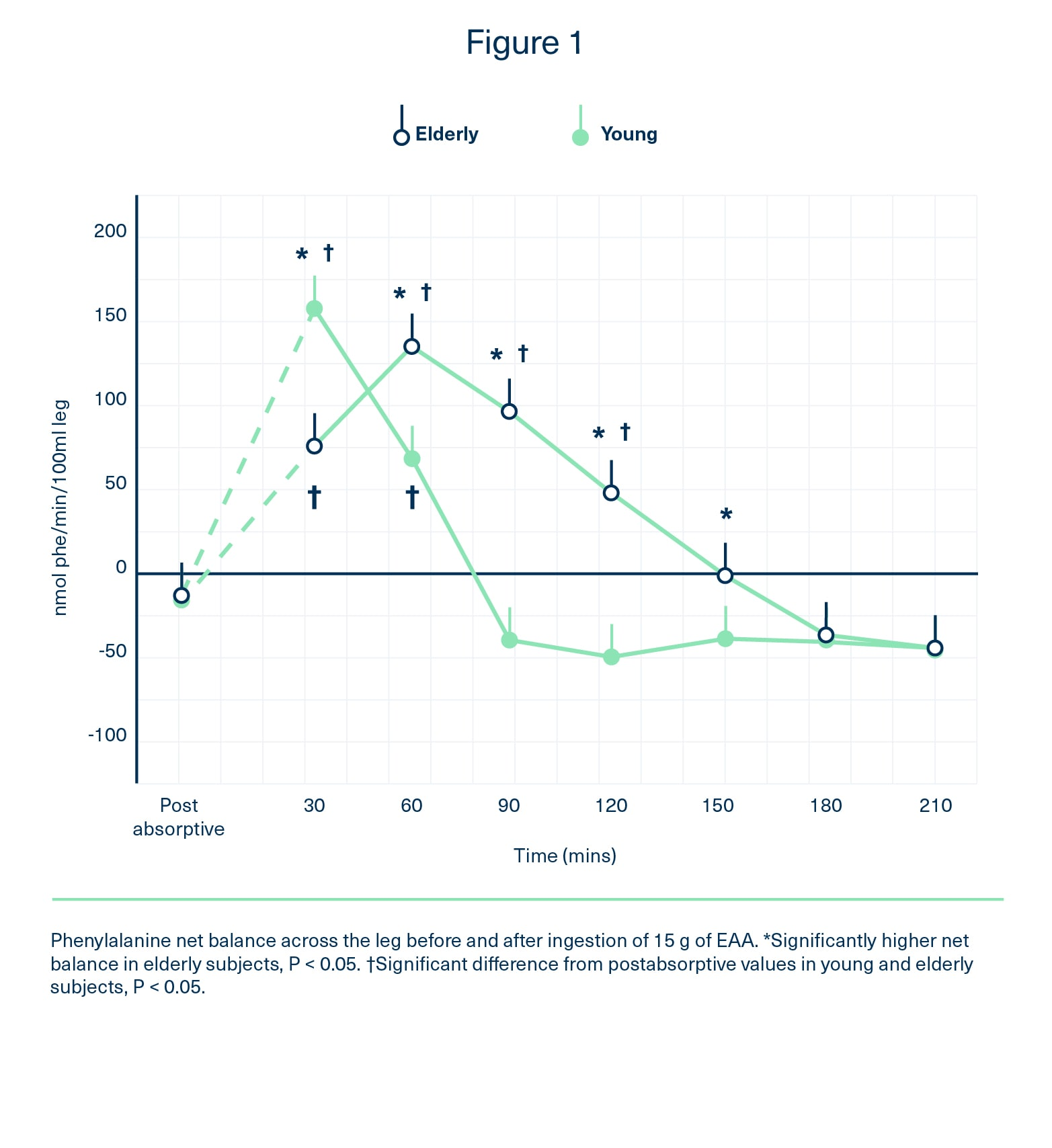 Graph showing phenylalanine balance was slower in elderly subjects after taking the essential amino acids, but remained higher for a longer period.