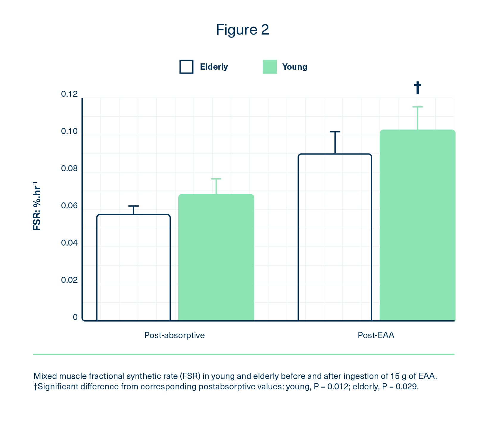 Fractional synthetic rate in young and elderly before and after ingestion of 15 g EAAs