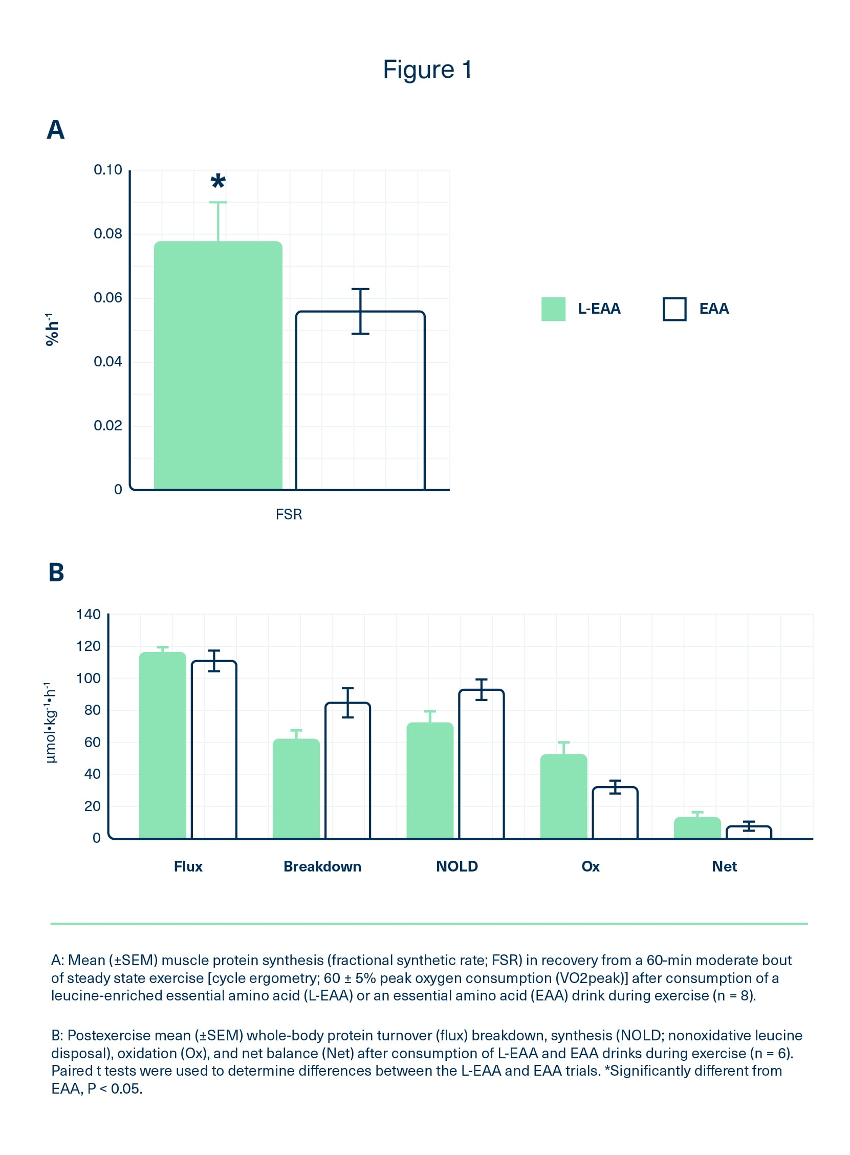 Leucine-enriched EAA supplement increased postexercise muscle protein synthesis 33% more