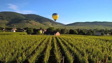 region alsace vin bio biodynamie naturel