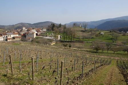 region savoie bugey vin bio biodynamie naturel