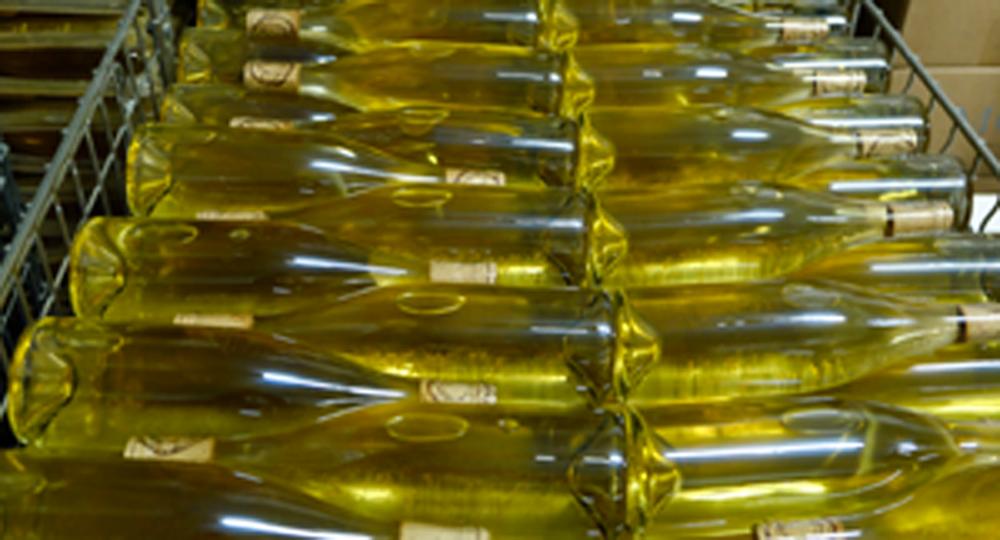 vins bio biodynamie nature comprendre savoir