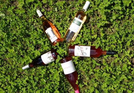 vins bio biodynamie naturel leger ete