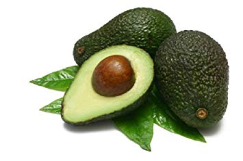 Image result for Persea Gratissima (Avocado) Oil,